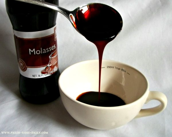 Like Molasses  – The Top 5 Causes of Fatigue!  You may be surprised!